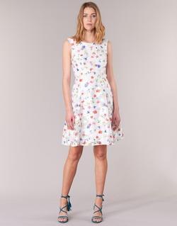 Abbigliamento Donna Abiti corti Derhy MAESTRIA Bianco