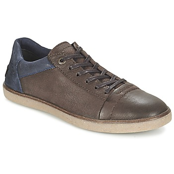 Scarpe Uomo Sneakers basse Kickers CALIC Marrone / Scuro