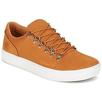 Scarpe Uomo Sneakers basse Timberland ADV 2.0 CUPSOLE ALPINE OX Marrone