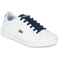 Scarpe Bambino Sneakers basse Lacoste CARNABY EVO Bianco / MARINE
