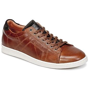 Scarpe Uomo Sneakers basse Redskins ORMIL COGNAC