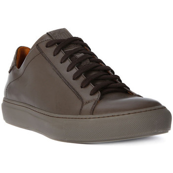 Scarpe Uomo Sneakers basse Lion WEST 311 Marrone