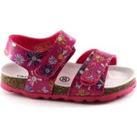 Scarpe Bambino Sandali Grunland ARIA SB0807 fuxia fantasia sandali bambina strappi birk Rosa