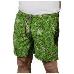 Abbigliamento Uomo Costume / Bermuda da spiaggia Napapijri VAIL Costumi mare multicolore