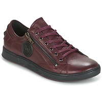 Scarpe Donna Sneakers basse Pataugas JESTER BORDEAUX