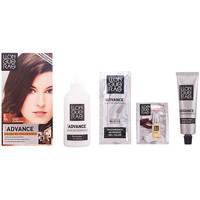 Bellezza Accessori per capelli Llongueras Color Advance 6-rubio Oscuro 1 u