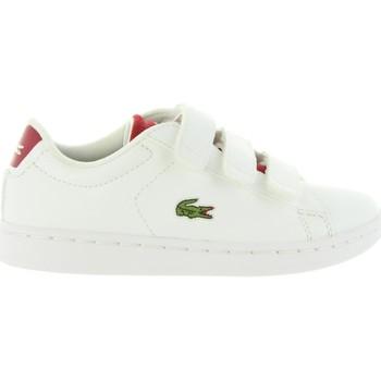 Scarpe Unisex bambino Sneakers basse Lacoste 34SPC0001 CARNABY Blanco
