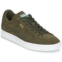 Scarpe Sneakers basse Puma SUEDE CLASSIC + Kaki / Bianco
