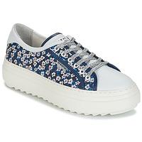 Scarpe Donna Sneakers basse Serafini SOHO Blu