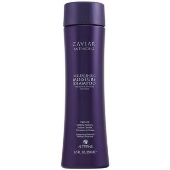 Bellezza Shampoo Alterna Caviar Anti-aging Replenishing Moisture Shampoo  250 ml