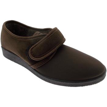 Scarpe Donna Pantofole Davema DAV392ma marrone