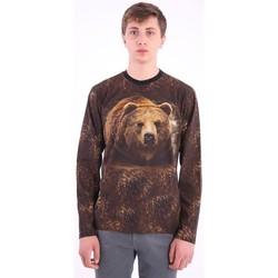 Abbigliamento Uomo T-shirts a maniche lunghe Etro T-SHIRT STAMPA ORSO MANICHE LUNGHE Brown