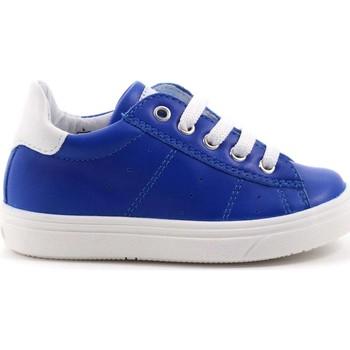 Scarpe Bambino Sneakers basse Ciao Bimbi 93 - 2630.05 Scarpa Allacciata Bambino Azzurro Azzurro