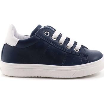 Scarpe Bambino Sneakers basse Ciao Bimbi 94 - 2630.03 Scarpa Allacciata Bambino Blu Blu