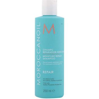 Bellezza Shampoo Moroccanoil Repair Moisture Repair Shampoo  250 ml