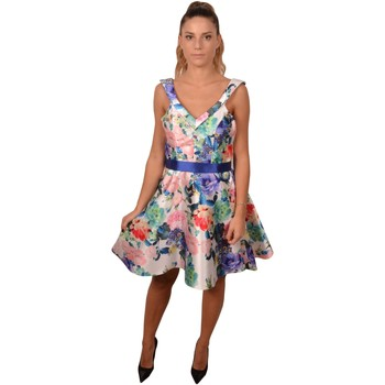Abbigliamento Donna Abiti corti Allure Short Woman White Blue Printed Flower Dress<BR/>202000 &nbsp;<B Bianco