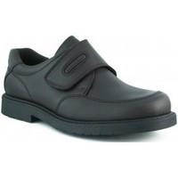 Scarpe Bambino Sneakers basse Pablosky TORO COLEGIAL MARRON