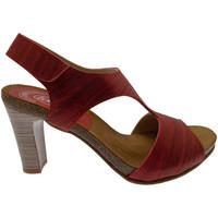 Scarpe Donna Sandali Loren J0833 sandalo zoccolo nero stampa legno nero