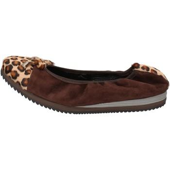 Scarpe Donna Ballerine Calpierre scarpe donna  ballerine marrone camoscio cavallino AD574 marrone