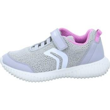 Scarpe Sneakers basse Geox Waviness Bianco-Grigio