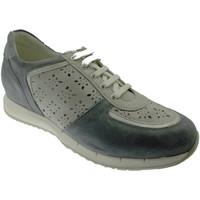 Scarpe Donna Sneakers basse Loren C3795 scarpa donna ortopedica sneaker lacci blue avio plantare blu