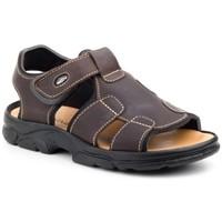 Scarpe Uomo Sandali sport Morxiva Shoes  Marron