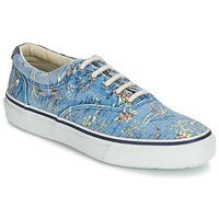 Scarpe Uomo Sneakers basse Sperry Top-Sider STRIPER HAWAIIAN Blu