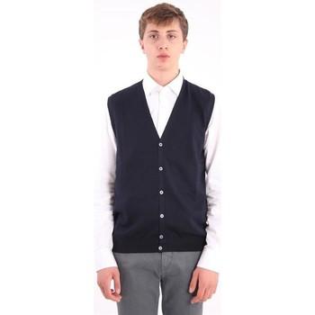 Abbigliamento Uomo Gilet / Cardigan Fay GILET IN LANA VERGINE BLU Blue