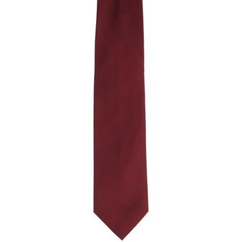 Abbigliamento Uomo Cravatte e accessori Holliday & Brown CRAVATTA IN SETA BORDEAUX Red