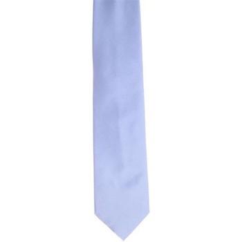 Abbigliamento Uomo Cravatte e accessori Holliday & Brown CRAVATTA IN SETA AZZURRA Blue