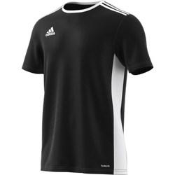 Abbigliamento Uomo T-shirt maniche corte adidas Originals Entrada 18 Bianco
