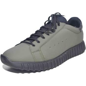 Scarpe Uomo Sneakers basse Made In Italia Sneakers bassa uomo art.0024 pelle gommato verde con calzino in VERDE