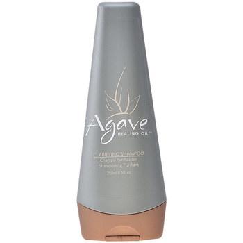 Bellezza Shampoo Agave Healing Oil Clarify Shampoo  250 ml