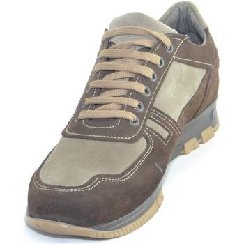 Scarpe Uomo Sneakers basse Made In Italy Scarpe uomo stringata classica in vera pelle scamosciata bicolor TESTA DI MORO