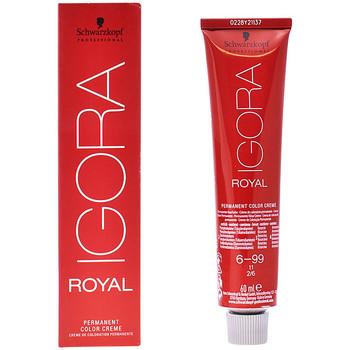 Bellezza Accessori per capelli Schwarzkopf Igora Royal 6-99  60 ml