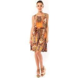 Abbigliamento Donna Abiti corti Dress Code Robe Elissa B369 Orange Arancio