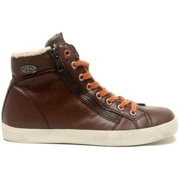 Scarpe Donna Sneakers alte Little Marcel Baskets Pratik H14IGC009 Marron Marrone