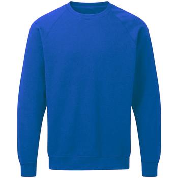 Abbigliamento Uomo Felpe Sg Raglan Blu reale