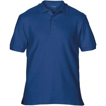 Abbigliamento Uomo Polo maniche corte Gildan Premium Blu navy