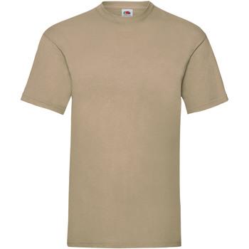 Abbigliamento Uomo T-shirt maniche corte Fruit Of The Loom 61036 Beige