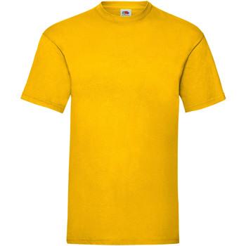 Abbigliamento Uomo T-shirt maniche corte Fruit Of The Loom 61036 Girasole