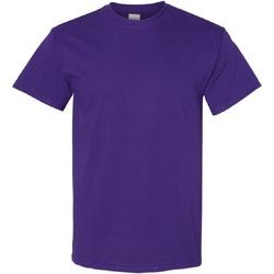 Abbigliamento Uomo T-shirt maniche corte Gildan Heavy Viola