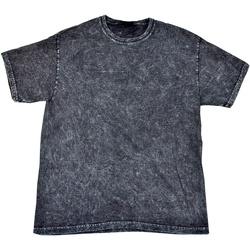 Abbigliamento Uomo T-shirt maniche corte Colortone Mineral Nero