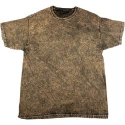 Abbigliamento Uomo T-shirt maniche corte Colortone Mineral Marrone