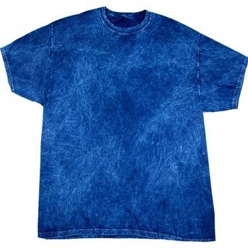 Abbigliamento Uomo T-shirt maniche corte Colortone Mineral Blu navy