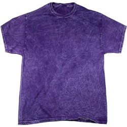 Abbigliamento Uomo T-shirt maniche corte Colortone Mineral Viola