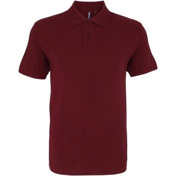 Abbigliamento Uomo Polo maniche corte Asquith & Fox AQ010 Bordeaux