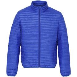 Abbigliamento Uomo Piumini 2786 TS018 Blu reale