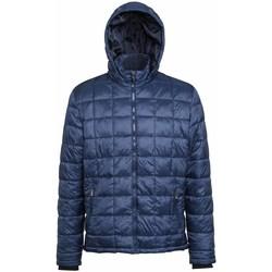 Abbigliamento Uomo Piumini 2786 TS025 Blu navy