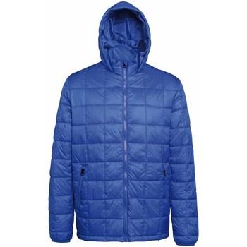 Abbigliamento Uomo Piumini 2786 TS025 Blu reale